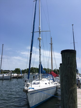 May 2019 Starboard side pic 1994 CATALINA MKI  2647849