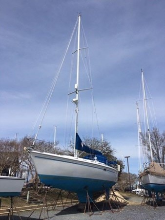 May 2019 Starboard side pic 1994 CATALINA MKI  2647852