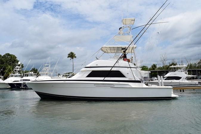 DSC_0135 1989 BERTRAM 50 Convertible Motor Yacht 2715059