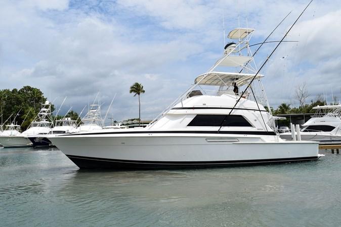 DSC_0132 1989 BERTRAM 50 Convertible Motor Yacht 2715060