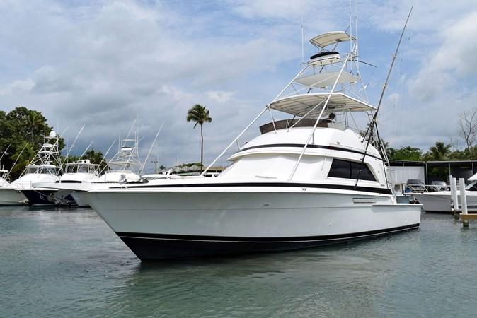 DSC_0125 1989 BERTRAM 50 Convertible Motor Yacht 2715062