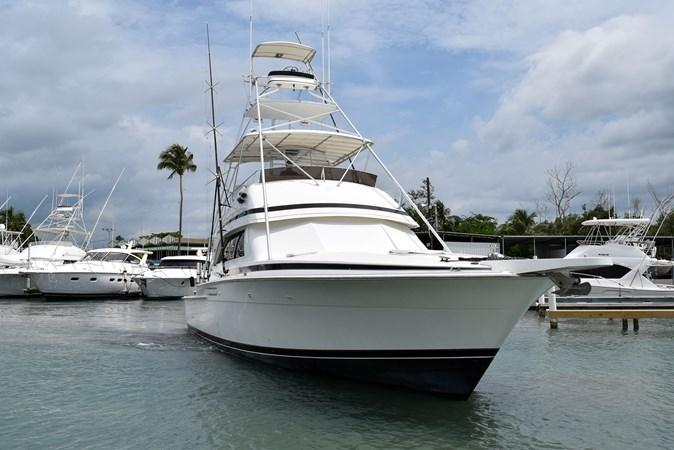 DSC_0118 1989 BERTRAM 50 Convertible Motor Yacht 2715065