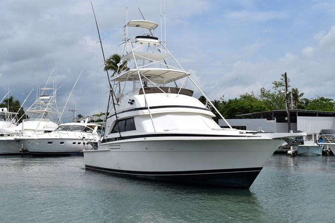 DSC_0114 1989 BERTRAM 50 Convertible Motor Yacht 2715066