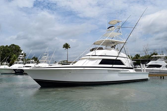 DSC_0129 1989 BERTRAM 50 Convertible Motor Yacht 2715101