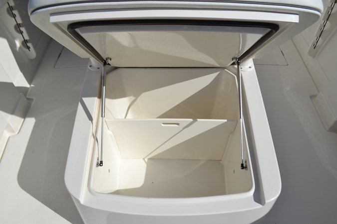Forward Console Lounge, Wet or Dry Storage 2017 JUPITER  Center Console 2716477