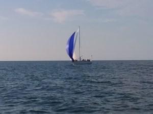 Sciabola 259219