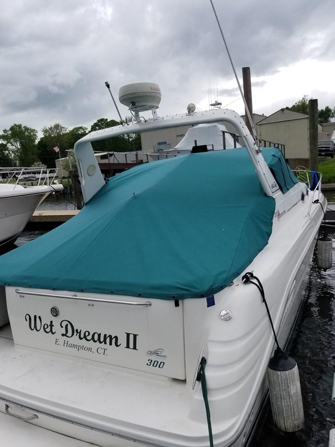 20180520_171655_resized 1996 SEA RAY 300 Sundancer Cruiser 2821825