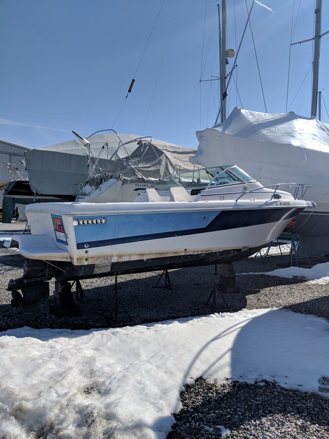 IMG_20190314_143736 1993 Pro Line 220 Cuddy Cabin Runabout 2816987