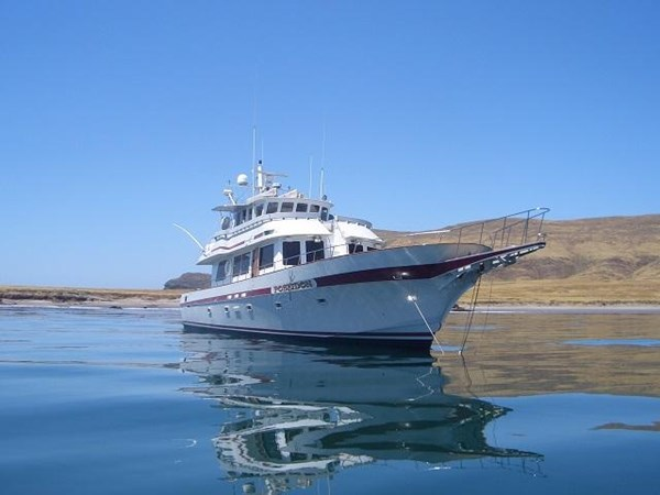 "2 1971 WILLARD ""65"" Pilothouse Motor Yacht 2819807"