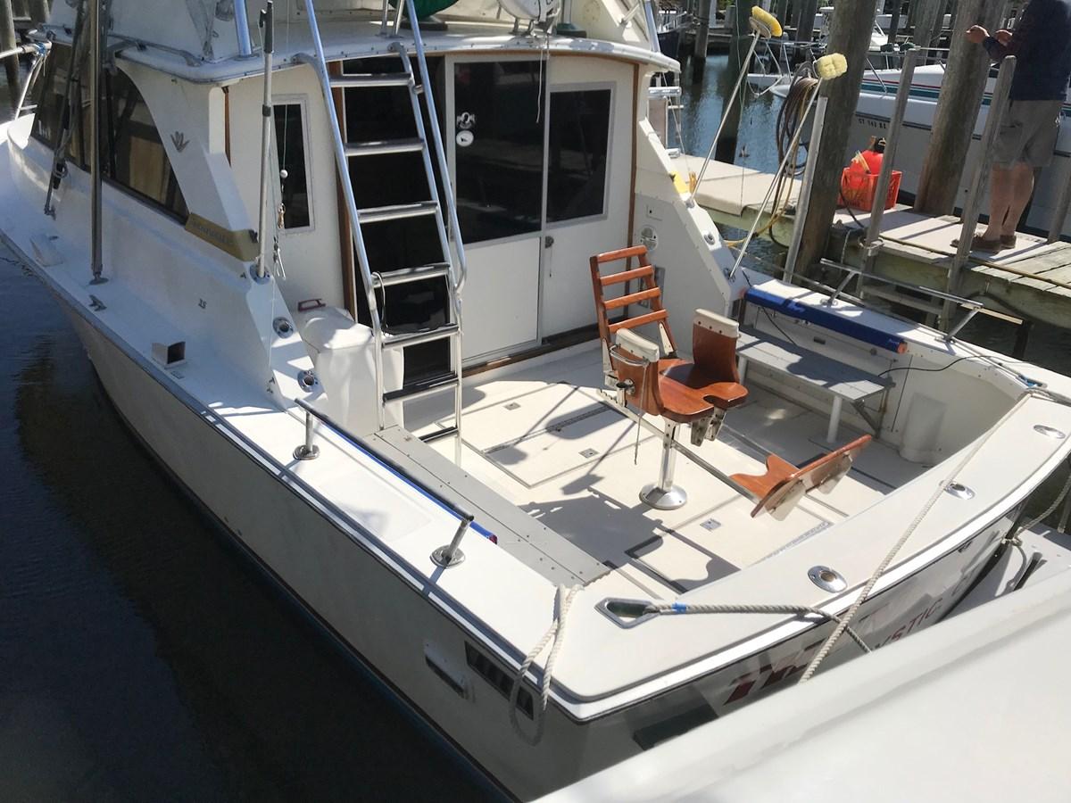 IMG_1440 1981 BERTRAM  Sport Fisherman 2844691