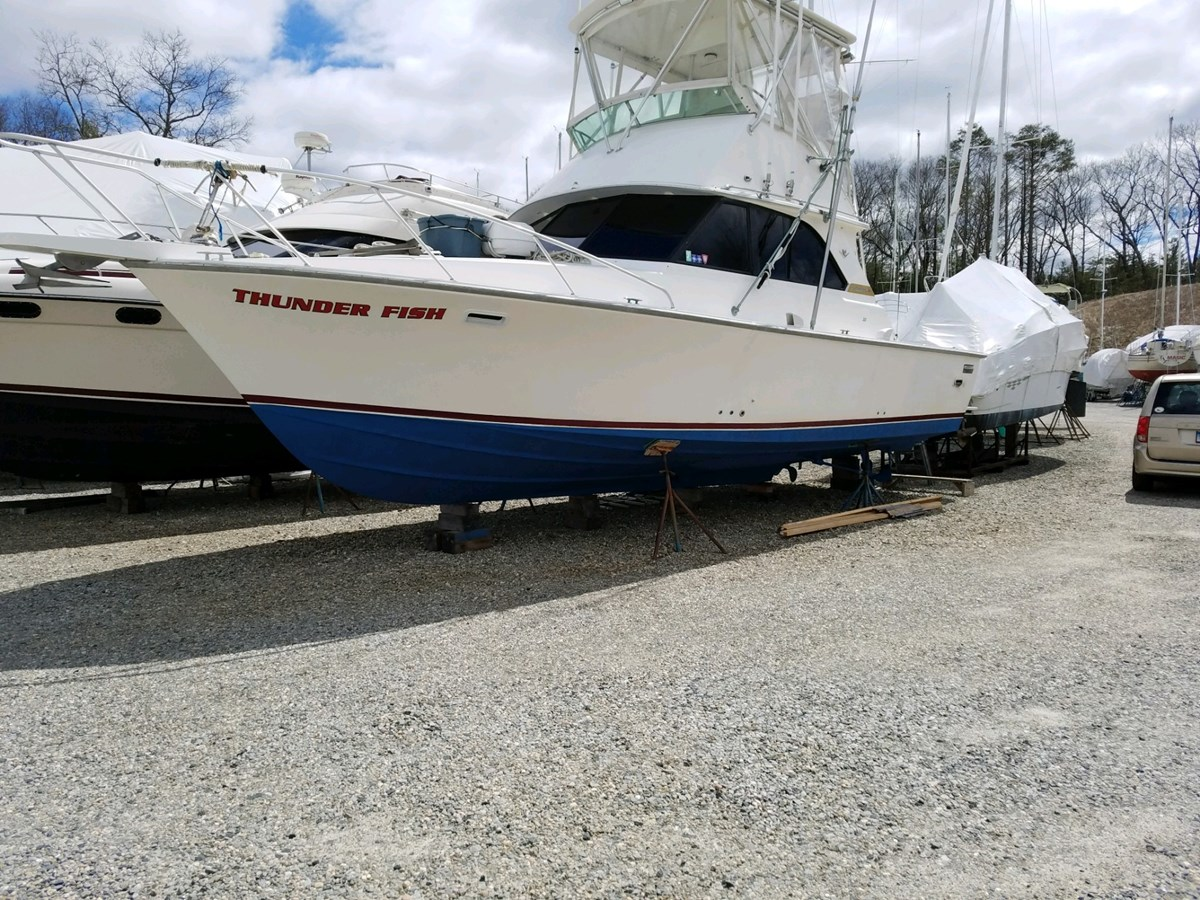 IMG_1445 1981 BERTRAM  Sport Fisherman 2844696