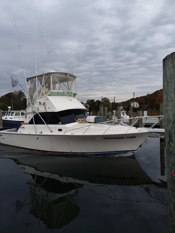 IMG_1446 1981 BERTRAM  Sport Fisherman 2844697
