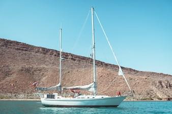 Sea Lady 262337