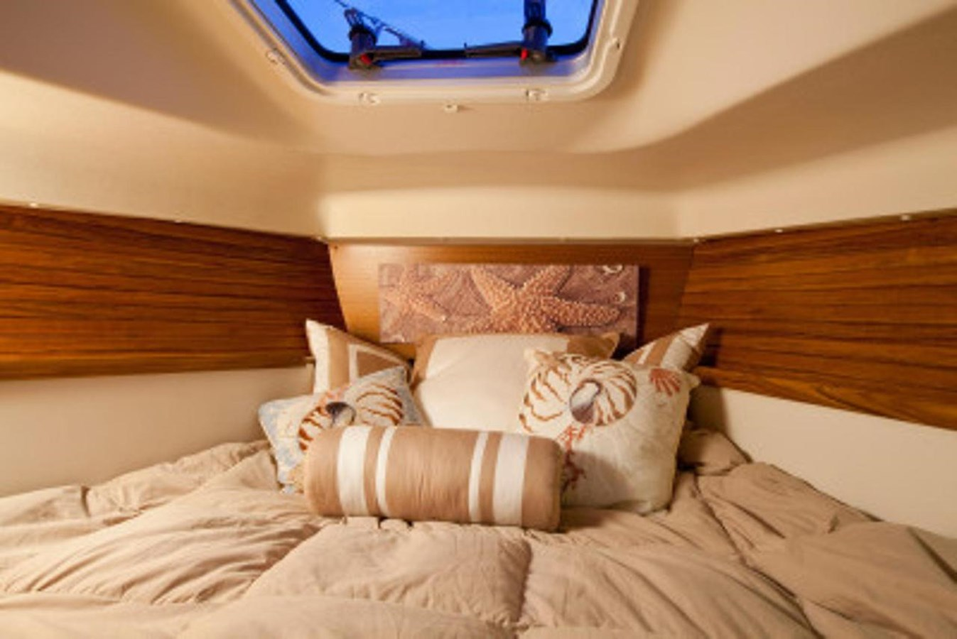 Forward Stateroom 2020 CATALINA  Sloop 2860384