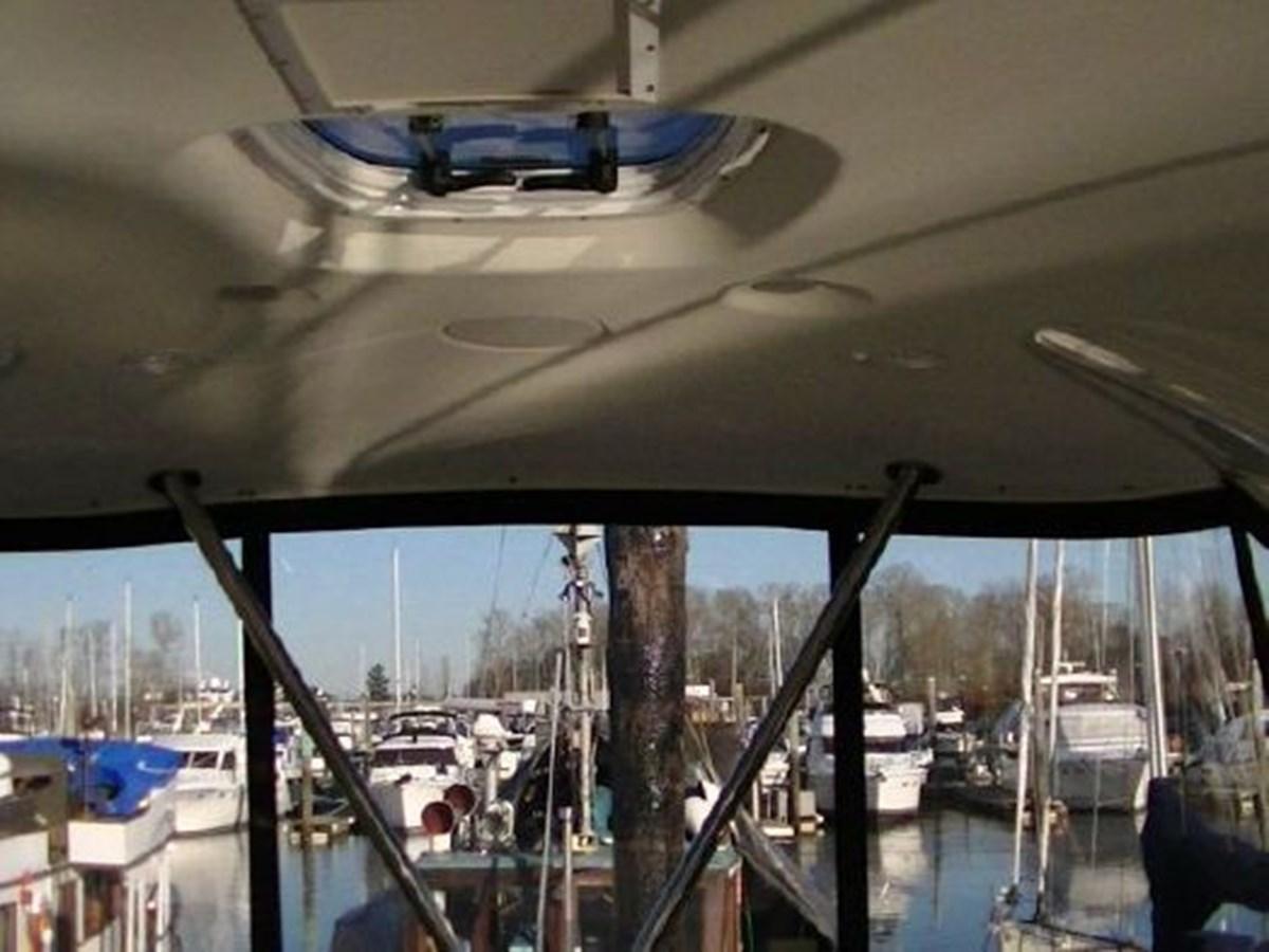 Hardtop 2009 MERIDIAN 441 Motor Yacht 2905154