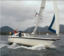 Prepona Azul 263979