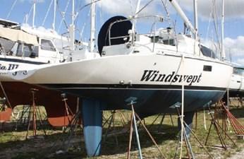 Windswept 266172