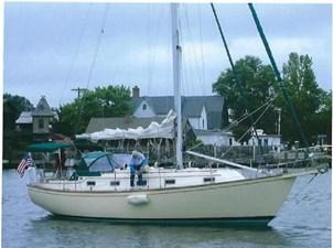 Sea Robin 266178
