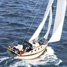 Seas The Day  268441