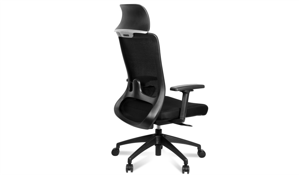 'Winger' Ergonomic Exe. Chair With Lumbar Support