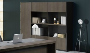 'Larry' Full Height Office Cabinet & Book Case