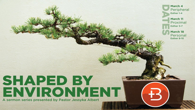 Shaped by Environment