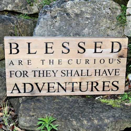 Blessed are the Curious Wall Art