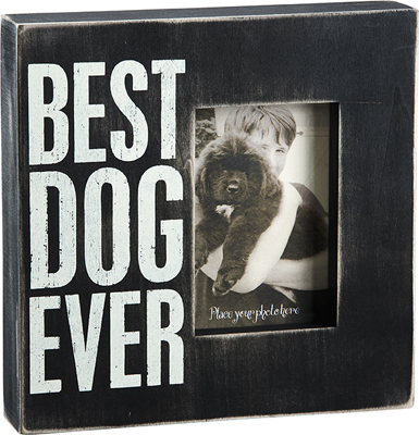 Best Dog Ever Box Frame