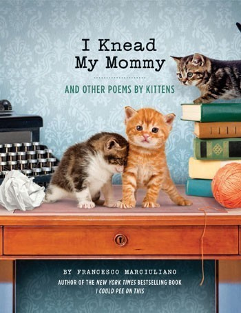 I Knead My Mommy Book