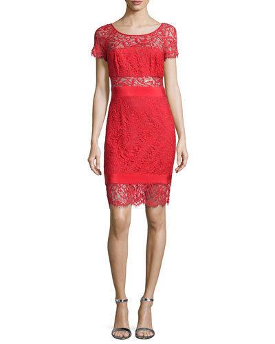 Short Sleeved Seamed Dress
