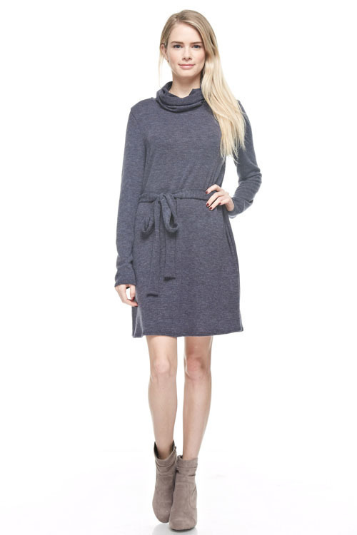 Bailey turtleneck dress