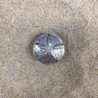 Sand Dollar Pewter Knob