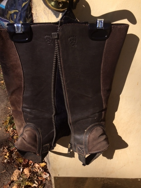 Consignment Ariat Half Chaps Brown Child L