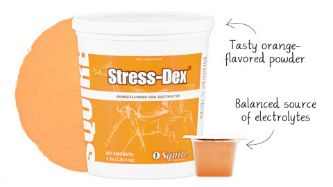 Squire STRESS-DEX oral electrolytes