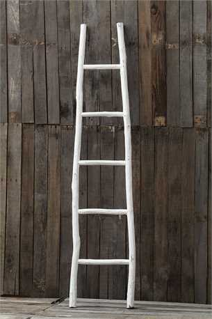 Decorative Painted Wood Ladder