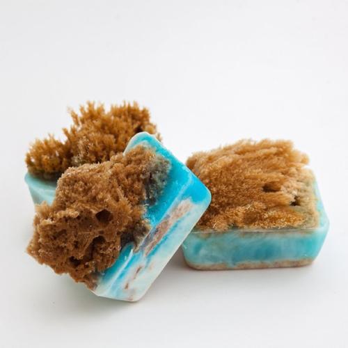 Ocean Sponge Soap