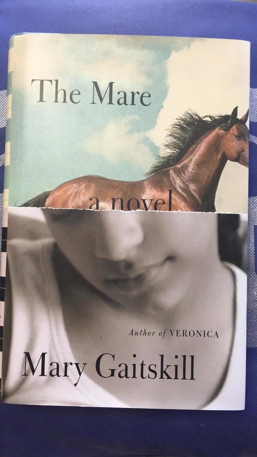 "Consignment ""The Mare"" by Mary Gaitskill"