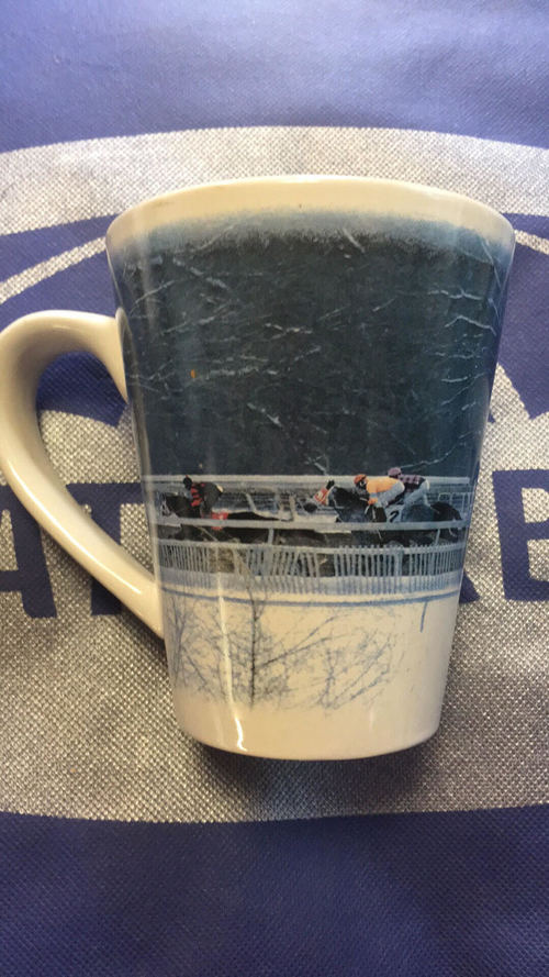 Consignment Laurel Racing Mug