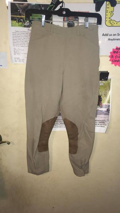 Consignment Tailored Sportsman Breeches