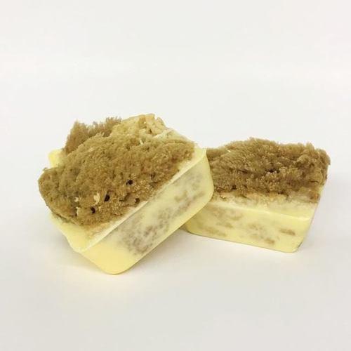 Pineapple Papaya Sponge Soap