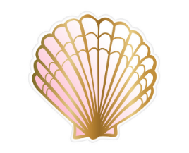 Clam Shell Die Cut Paper Plate