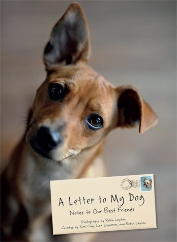 A Letter to My Dog Book