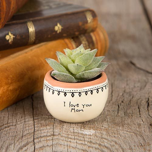 I Love You Mom Succulent Keepsake