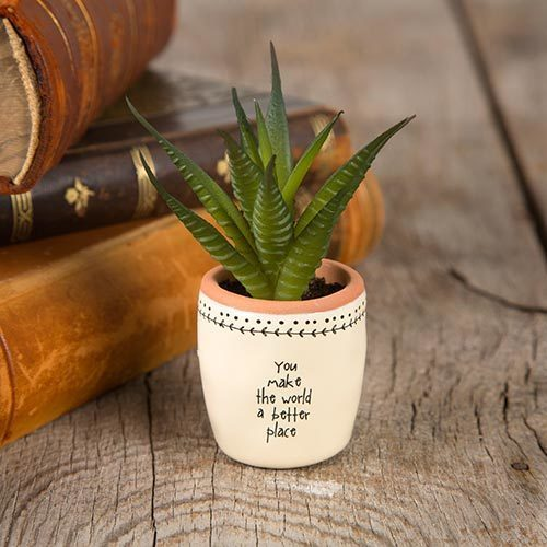 You Make the World Better Succulent Keepsake