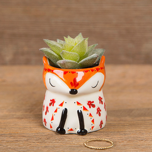 Fox Critter Succulent