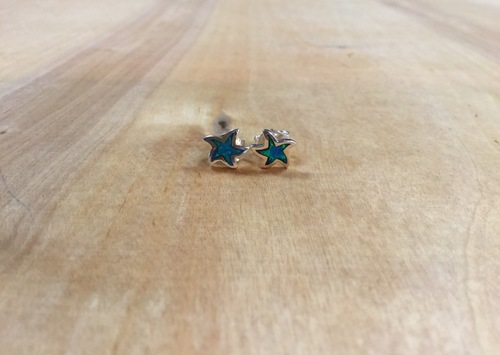 Lab Created Star Embedded Earrings