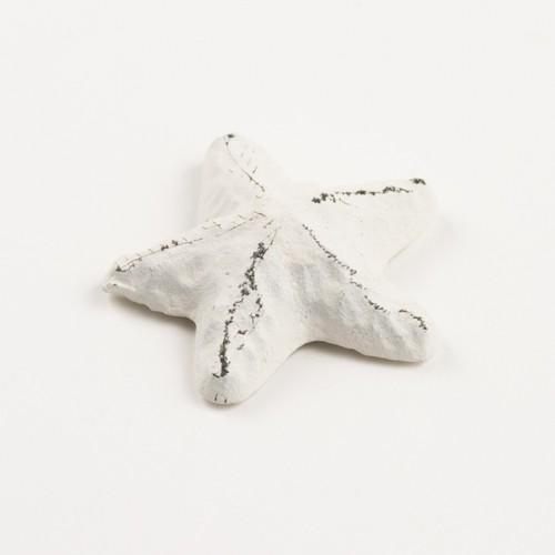 Starfish Magnet White