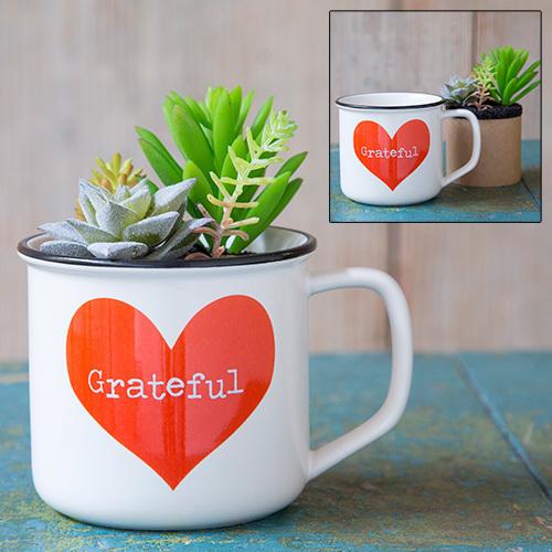 Gratitude 2 in1 Mug Succulent