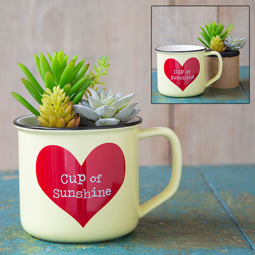 Cup Of Sunshine 2in1 Mug Succulent