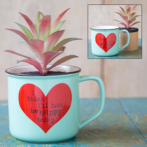 I Think I'll Just Be Happy 2in1 Mug Succulent
